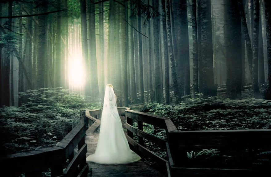 New_Wedding_woods-EditDENNE-EditabcFINAL-Edit