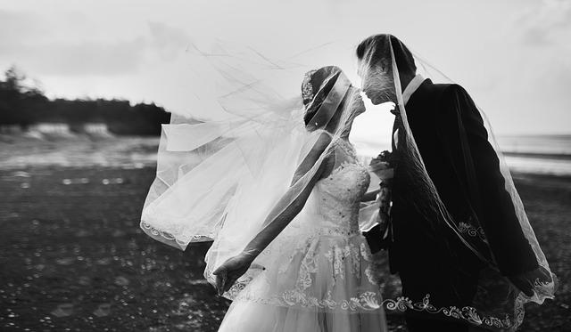 4f6eed66a41c Holder du dit bryllup i juli eller januar  Hvad med blomsterne  Vil du  nelliker